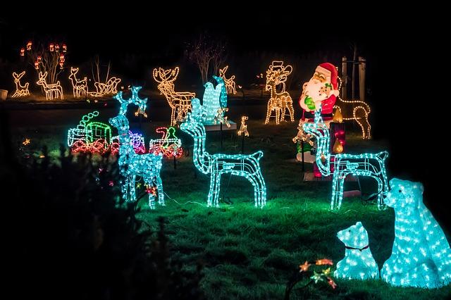 vánoční zvířátka a Santa